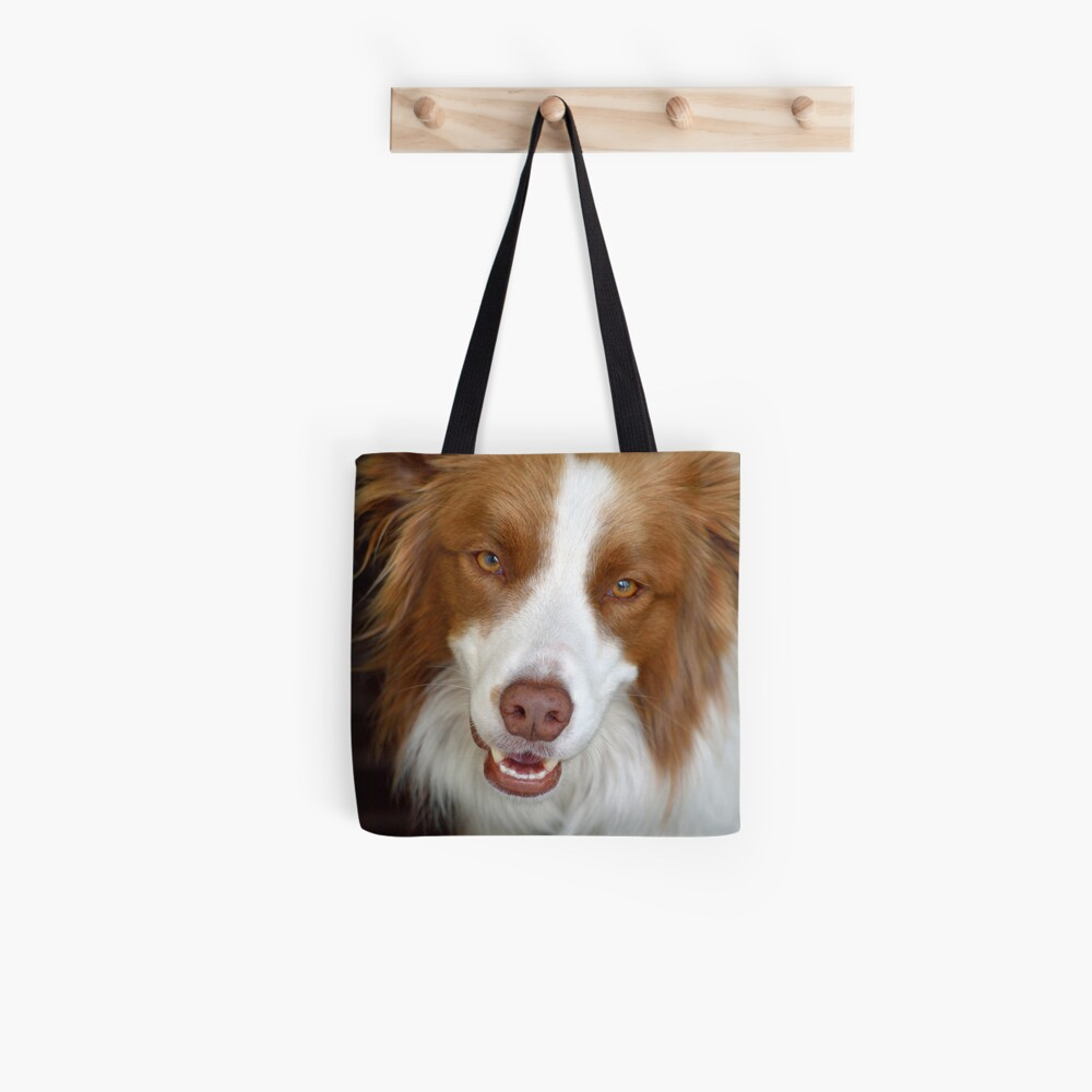 Beautiful Border Collie Tote Bag