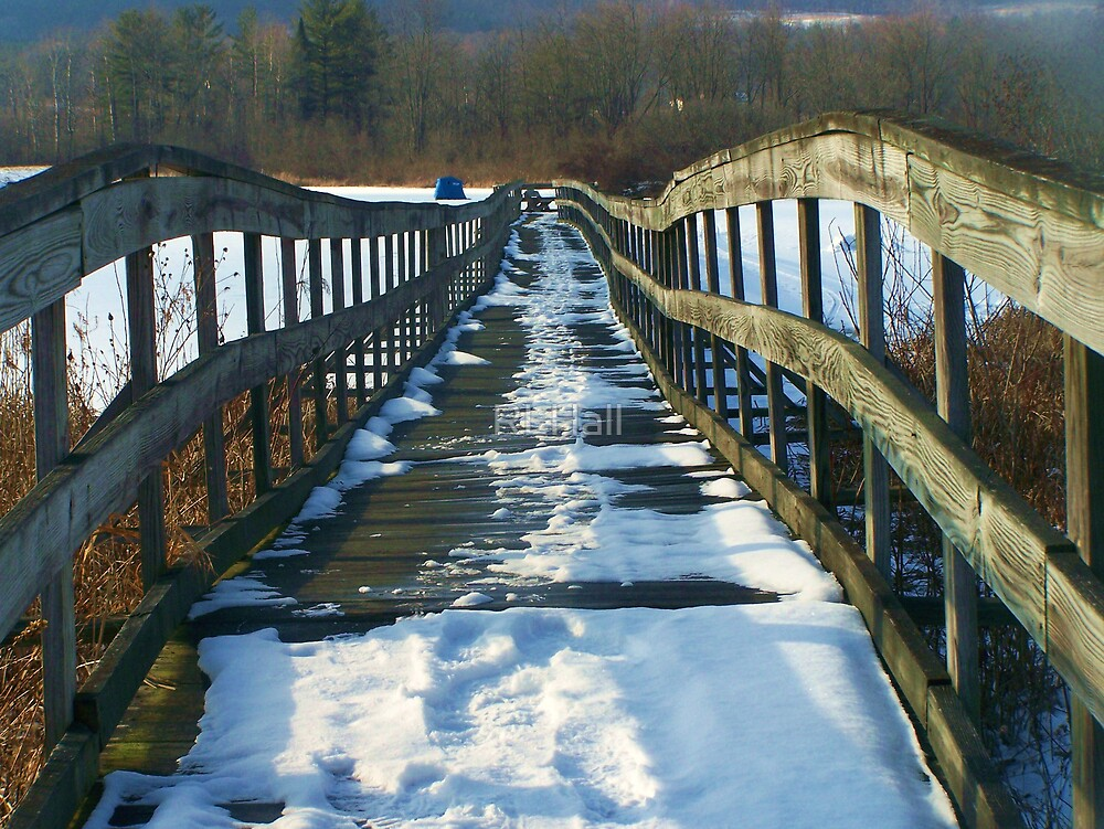 Gone Ice Fishin' by RLHall