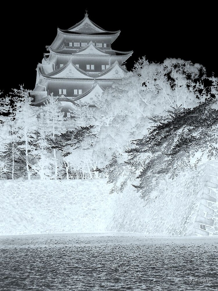 Nagoya In Negative by Valerius