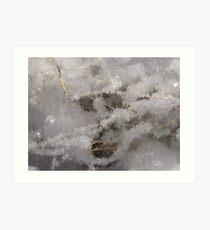 Whiteness of Snow!! Art Print