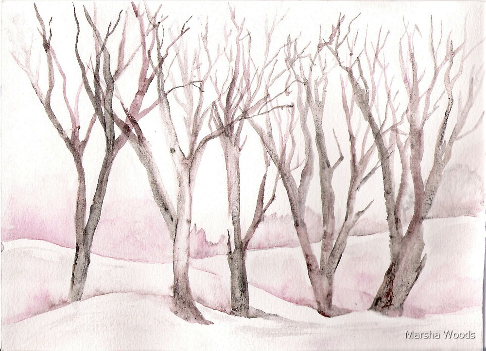 Winter Trees by Marsha Woods