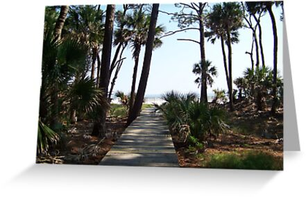 Peaceful boardwalk to the Atlantic Ocean by Forget-me-not