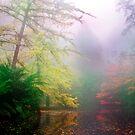 Mystic Lake I by Ern Mainka