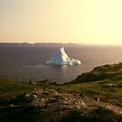 Iceberg along the coast by Colin Tobin