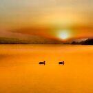 Golden sunset - Bala Lake by missmoneypenny