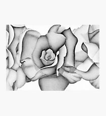 The First Flower (Tonal Drawing) Photographic Print