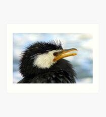Does It Make Any Difference! - Shag/Cormorant - Queenstown NZ Art Print