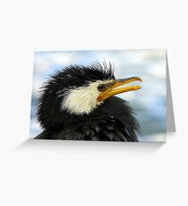 Does It Make Any Difference! - Shag/Cormorant - Queenstown NZ Greeting Card