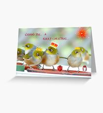 We Three Kings Of Orient Are - Silver-Eyes Christmas Card - NZ Greeting Card