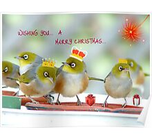 We Three Kings Of Orient Are - Silver-Eyes Christmas Card - NZ Poster