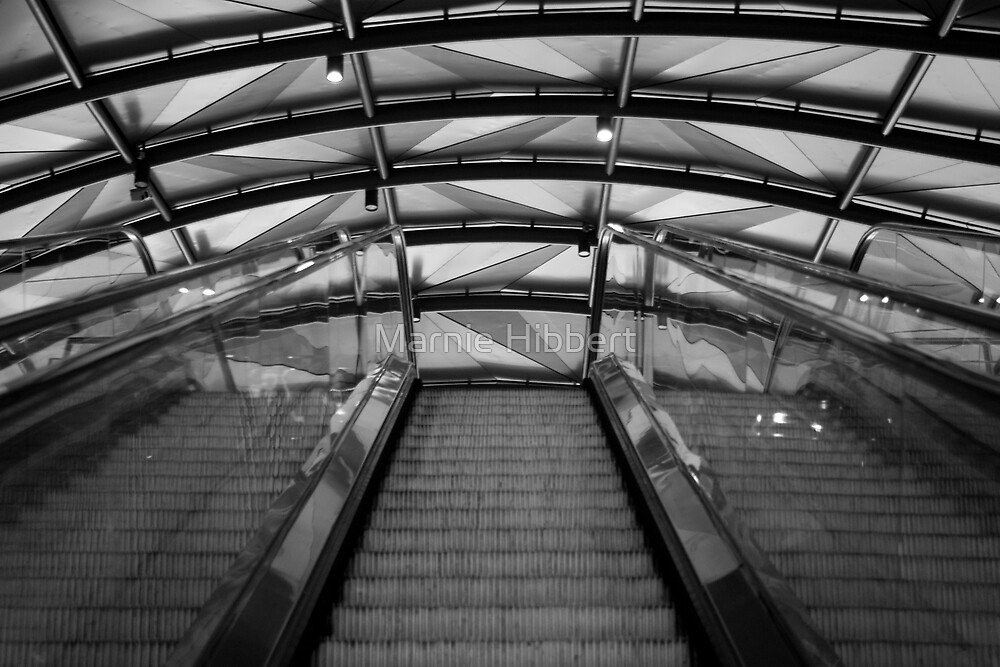 Going Up No.2 by Marnie Hibbert