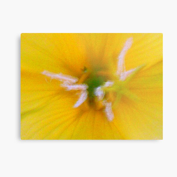 Yellow Frenzy Metal Print