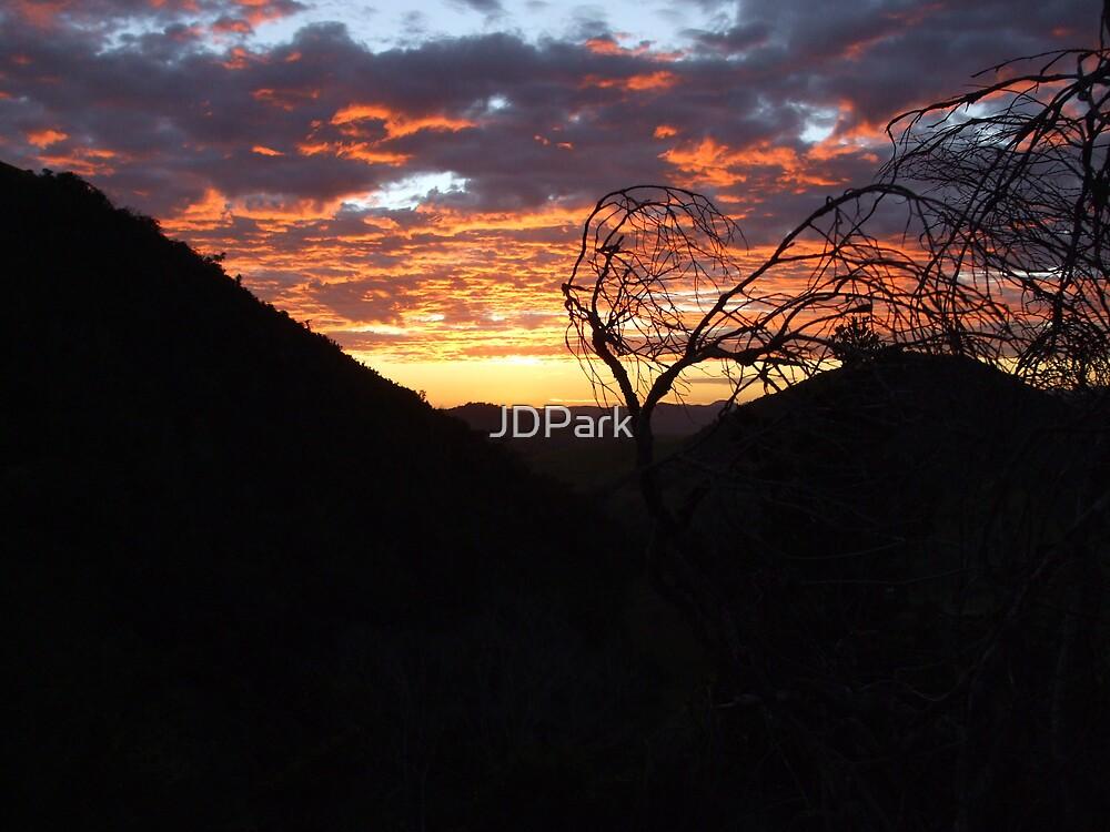 sunrise  by JDPark