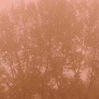 FLAME - TREE by Alessandro Nesci