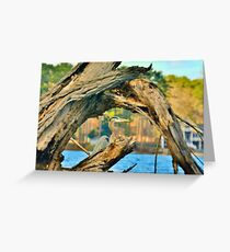 Hiding Among The Trees Greeting Card