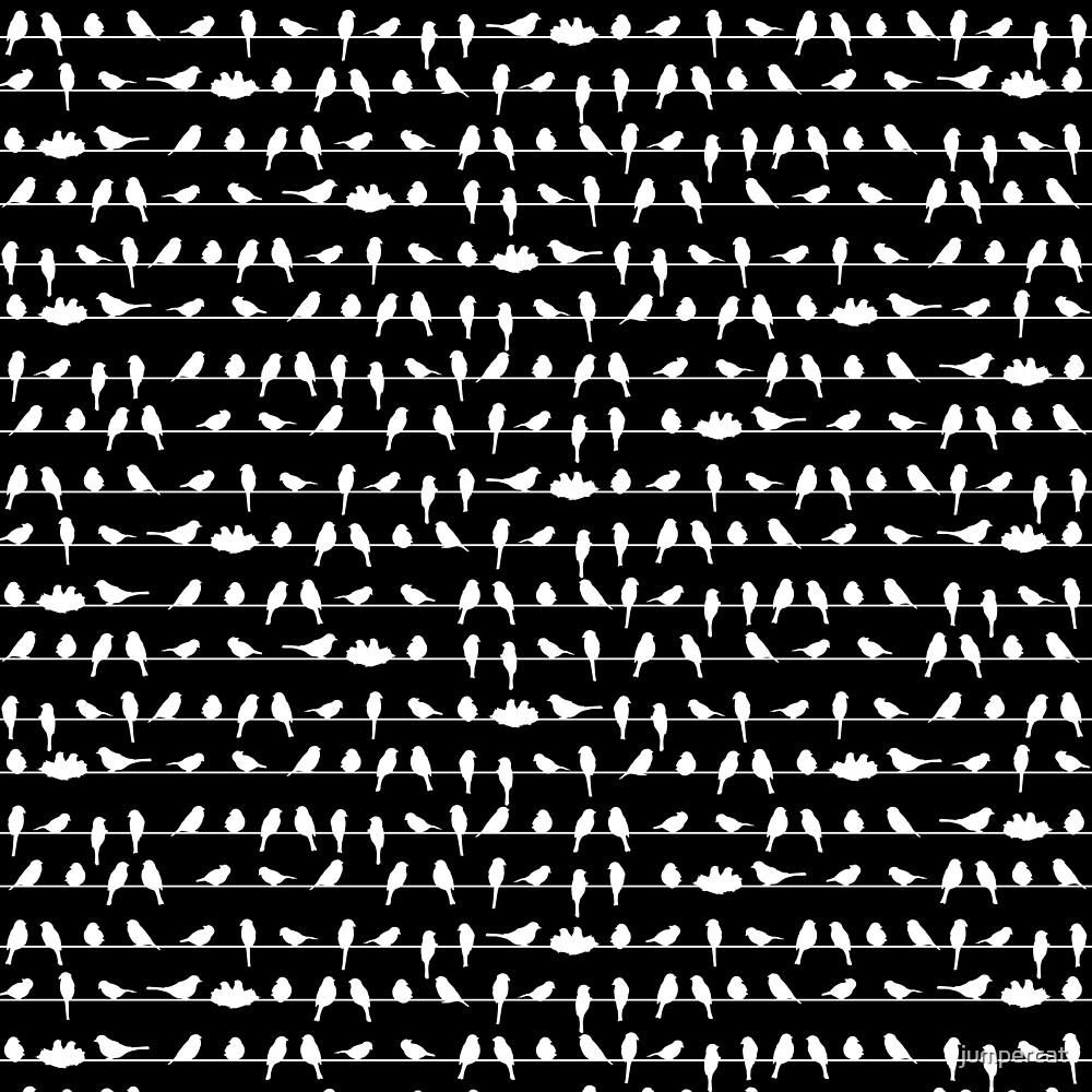 Dark Note Striped Birds by jumpercat