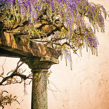 Porch with Wisteria by sil63