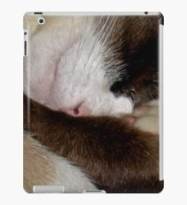 Sleeping Ali Angel  iPad Case/Skin