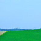 Simply Tuscan I by Ashley Ng