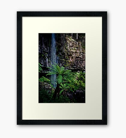 Bindaree Falls Framed Print