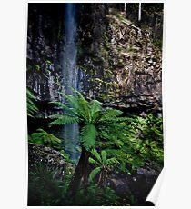 Bindaree Falls Poster