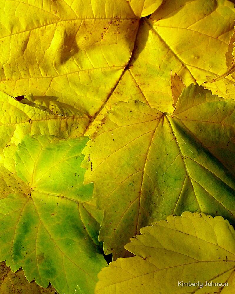 Yellow Fall Leaves by Kimberly Johnson