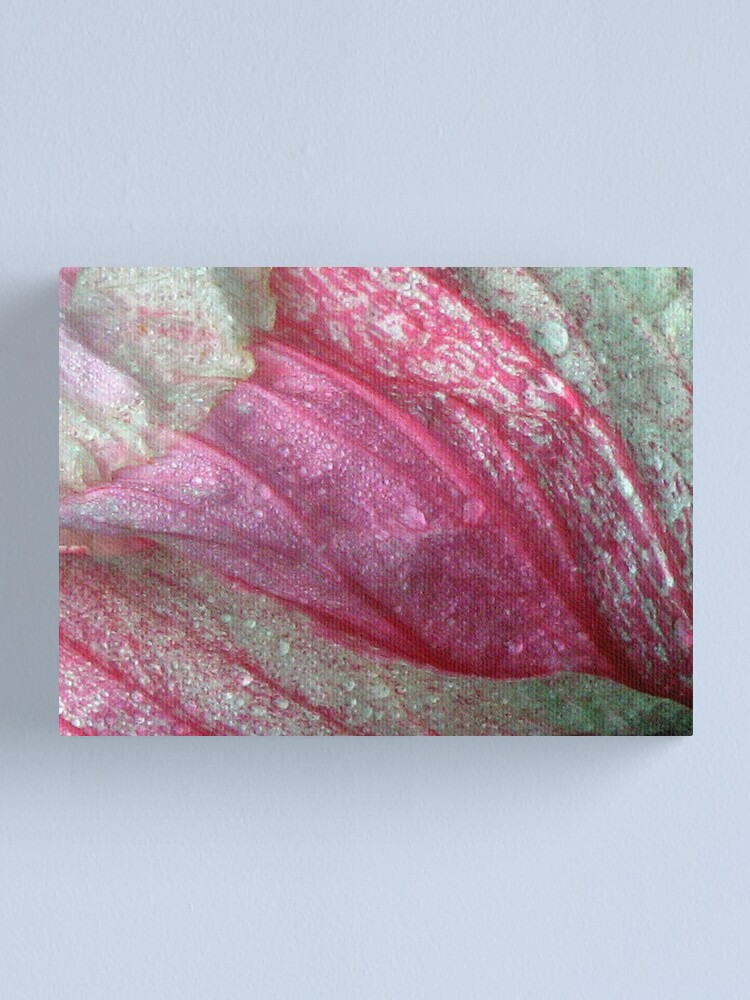 Alternate view of Leaf Life End 2 Canvas Print