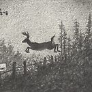 ACEO Sanctuary - Whitetail Deer by John Houle
