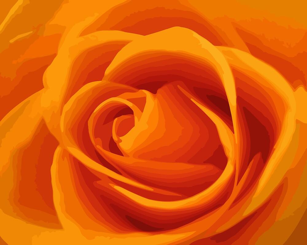 orange rose_V by mimbravastudio