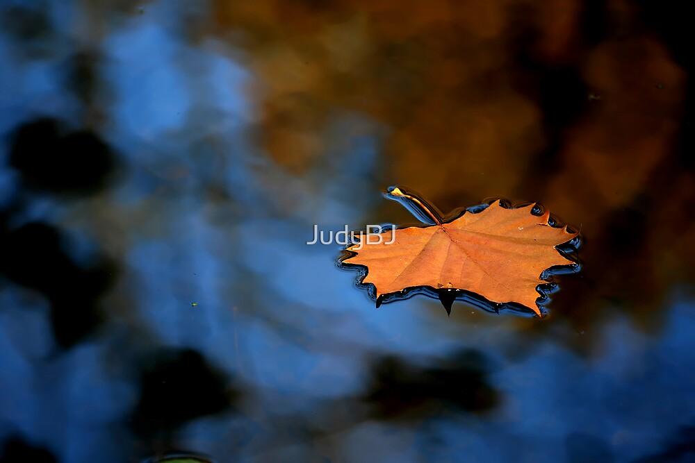 rusty fall leaf  by JudyBJ