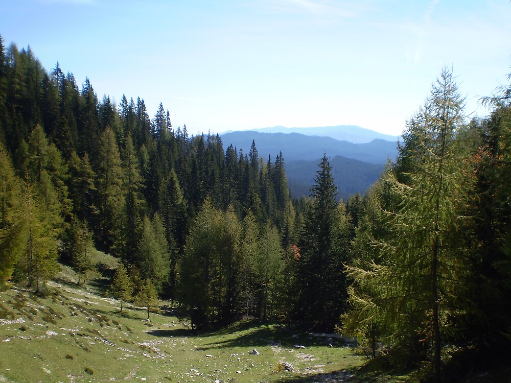 View from Debela Pek, Slovenia by oscars