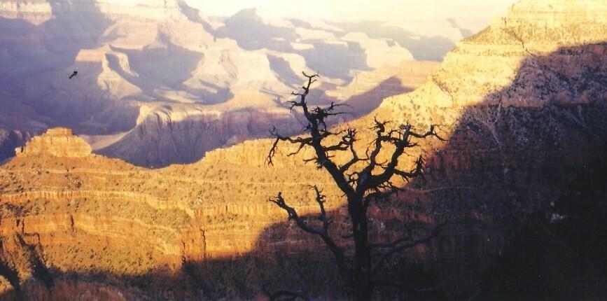 Grand Canyon by ricki