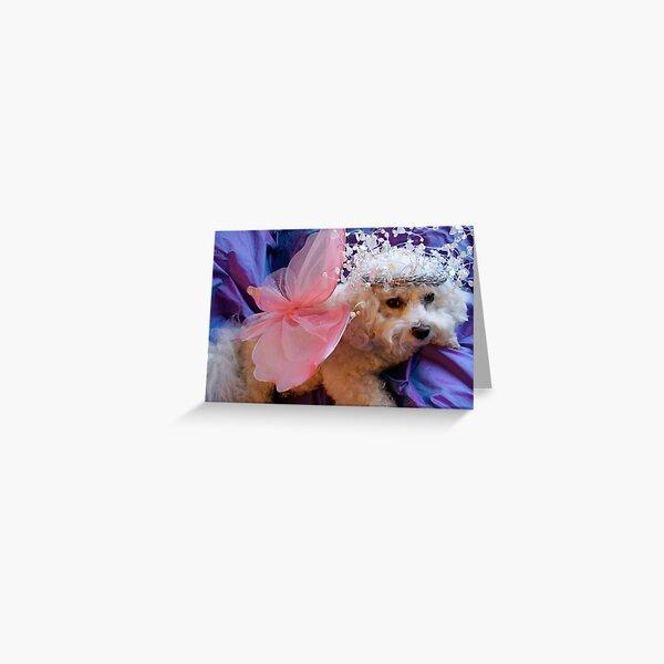 Bichon Frise - Angel Greeting Card