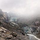 Fox Glacier 6 by Alex Preiss