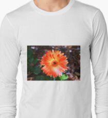 Orange Daisy Long Sleeve T-Shirt