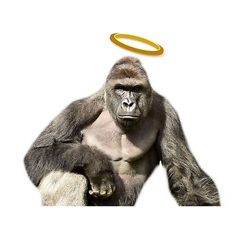 Harambe Never Forget by narc0l3ptic