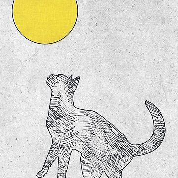 Holi Sun by mbianchi