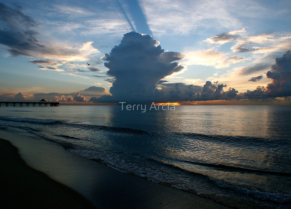 Stormy Day In Paradise   by Terry Arcia