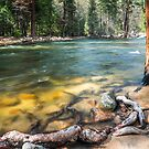 Spring Melt in Yosemite National Park by Eric Kulikoff