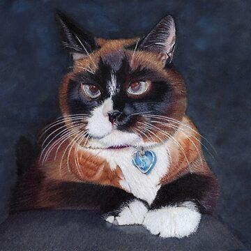 Beautiful Cross Eyed Cat by Shana1065