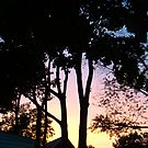 sunset from my back door by cynthia harper