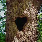 Heart Tree by FrankieCat