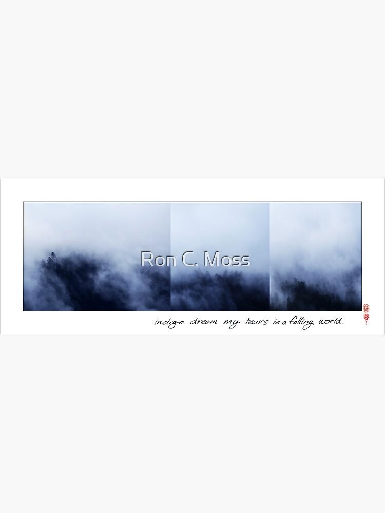 Indigo Dream by ronmoss