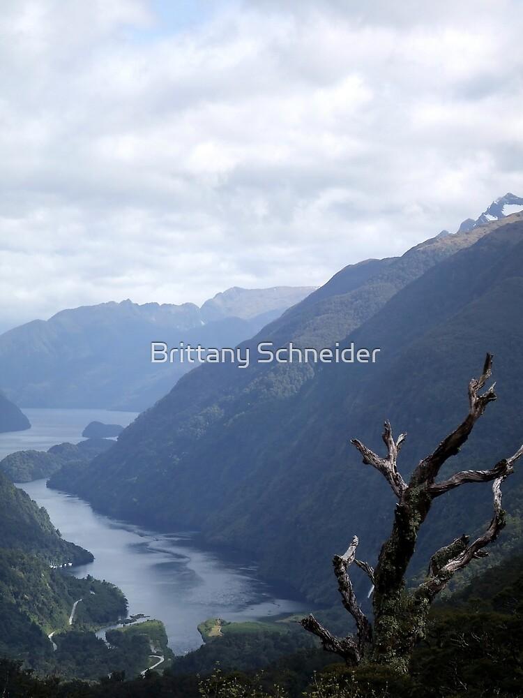 Fjord Valley by Brittany Schneider