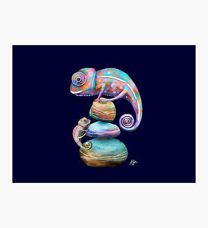 Chameleons Photographic Print