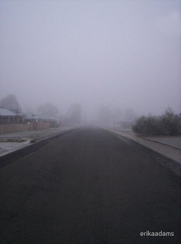 Foggy Street by erikaadams