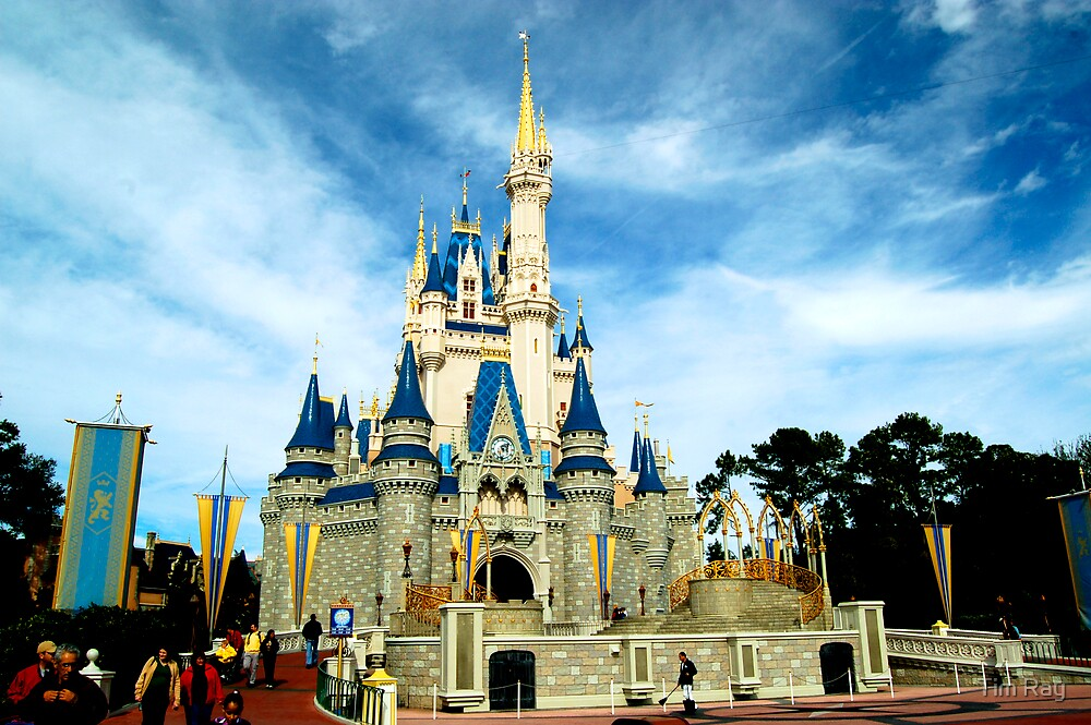 The Magic Kingdom (Orlando, FL) by Tim Ray