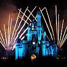 Magic Kingdom Fireworks by Tim Ray