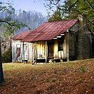 Early Settler by Lisa G. Putman