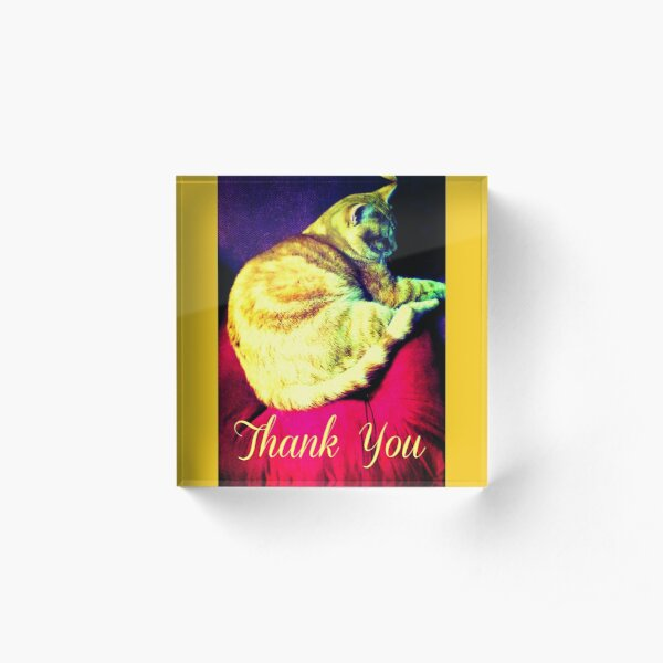Thank You Magical Words Cat Acrylic Block